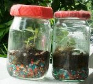 create eco system in a jar