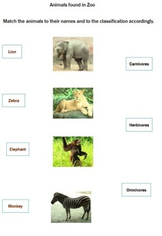 zoo animals worksheets2