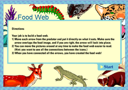 food web game from scholastic